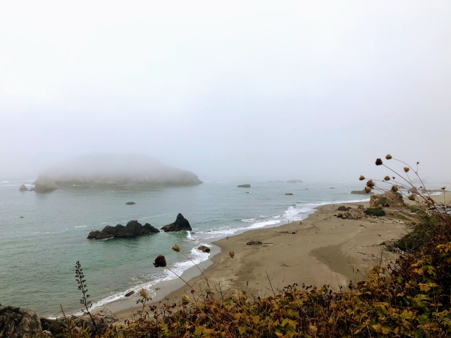 Fog coming in along the beach