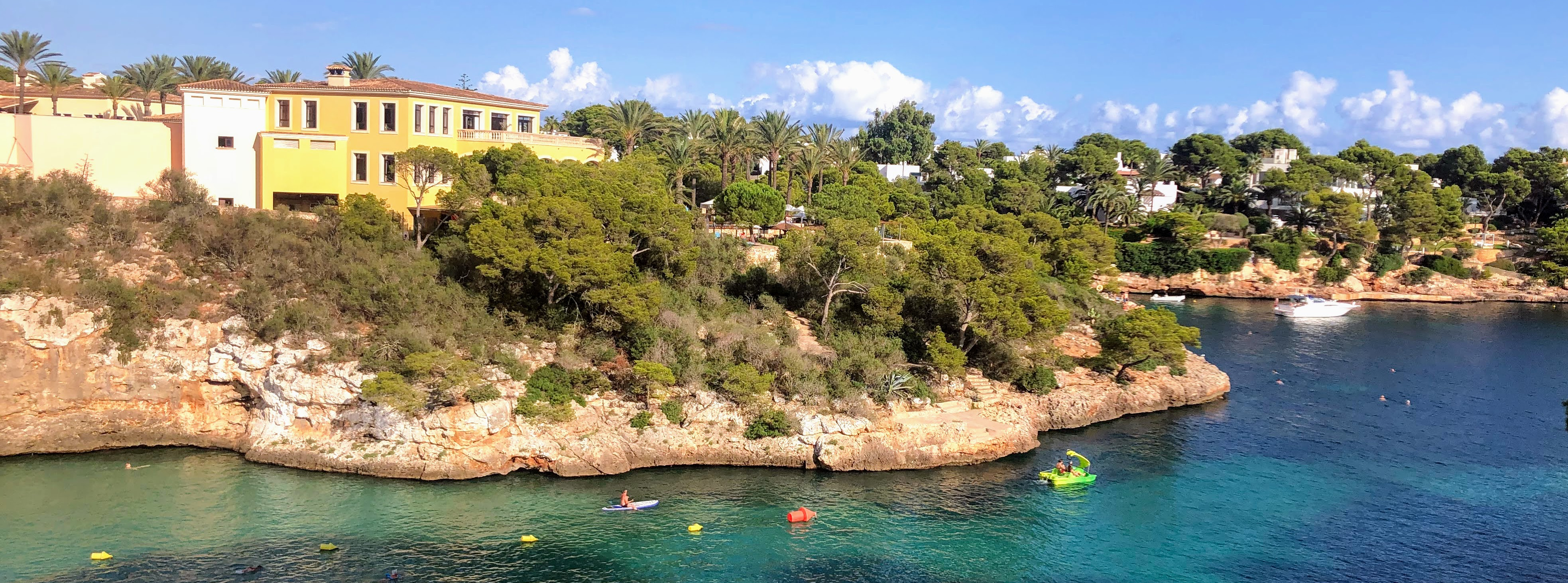 view of the ocean with some pines and houses on cliffs