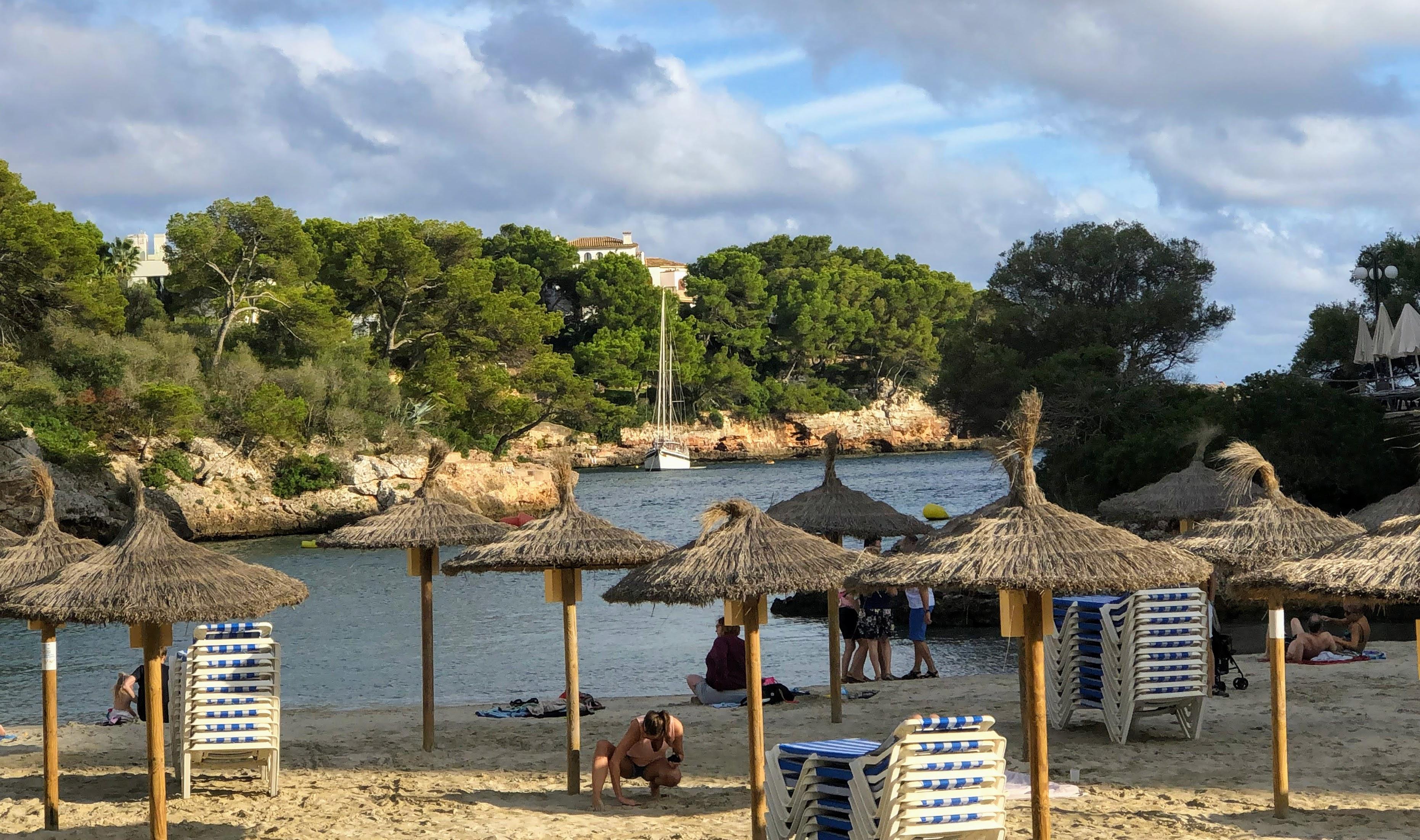 beach with talapas